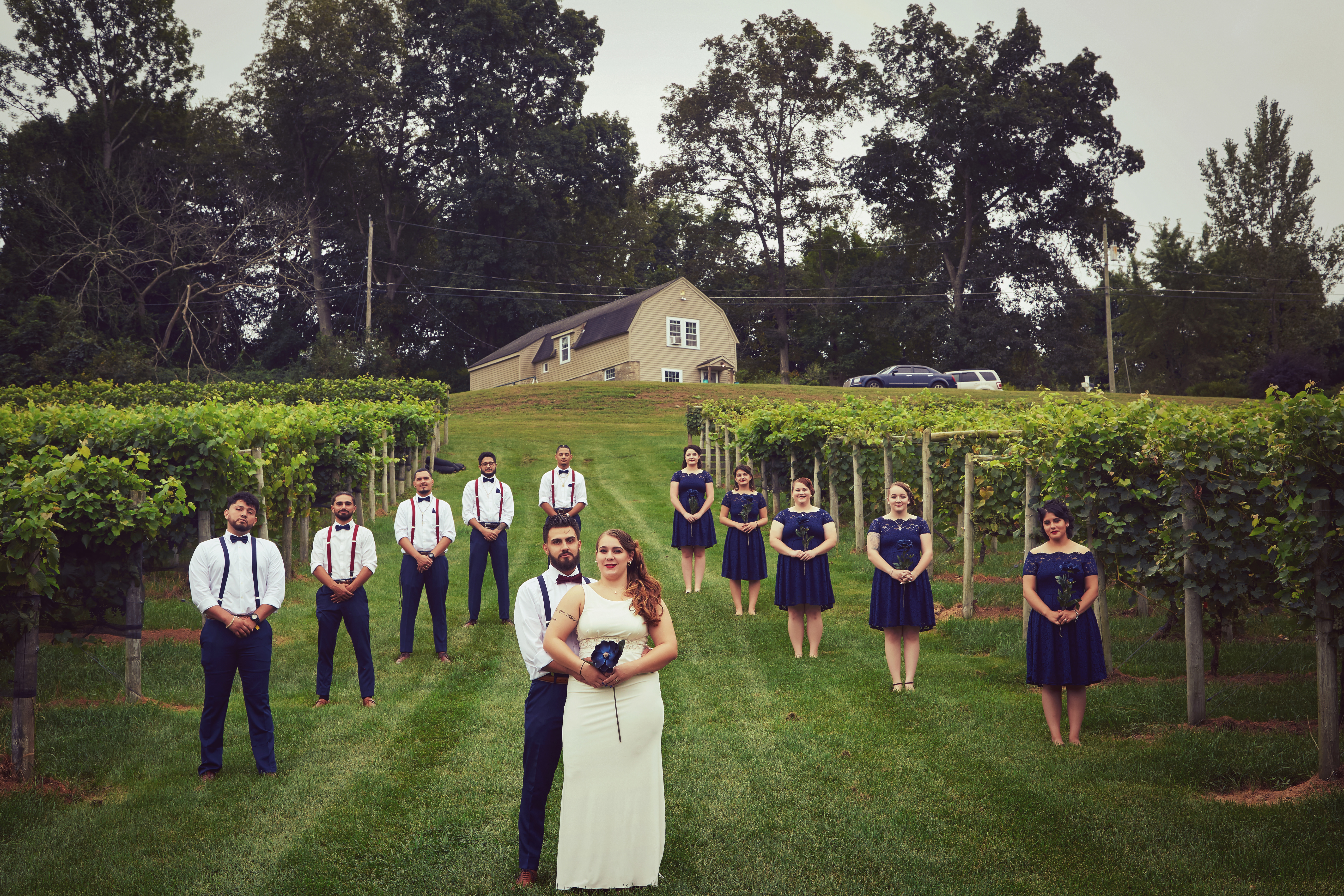 Wedding Photography in Vineyard at Hillyland Scotland Connecticut